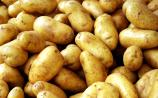 Ireland imported 72,000 tonnes of spuds reveals Laois TD who wants change