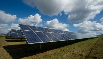 Large scale solar farm gets planning permission in Carlow