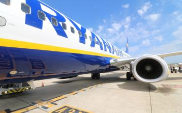Ryanair take shot at Government with job ad on company's website