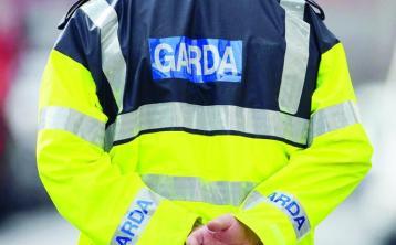 Gardaí investigating Carlow shed burglary