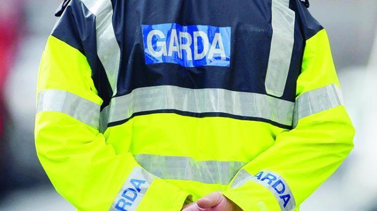 Carlow gardaí investigating after car set on fire