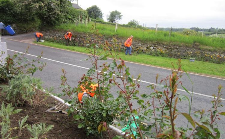 GALLERY: Rathvilly Tidy Towns volunteers go out 'painting, planting and cleaning'